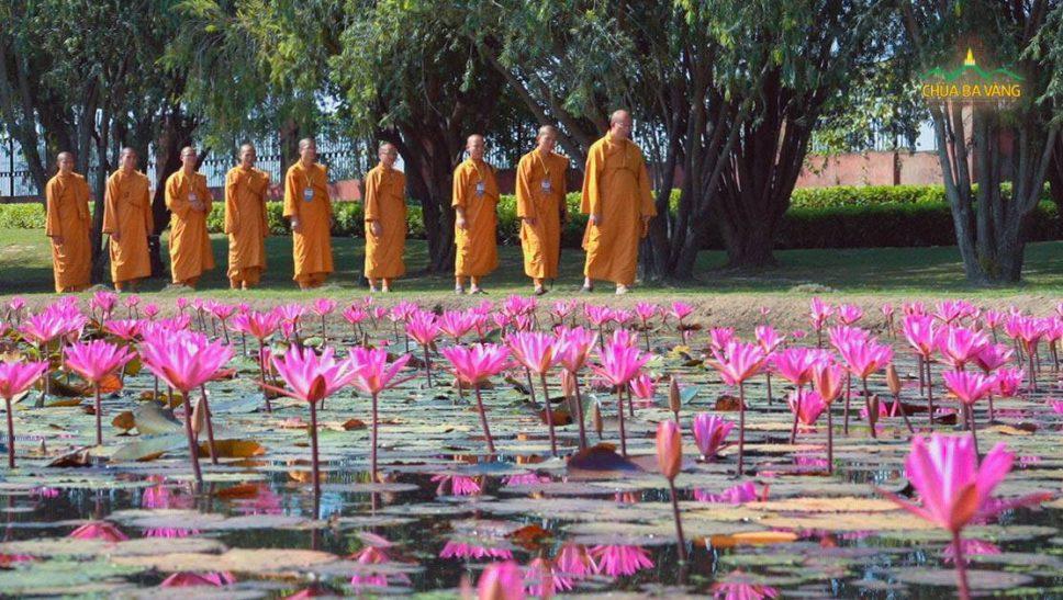 Chư Tăng chùa Ba Vàng đến thăm thành Kapilavatthu.