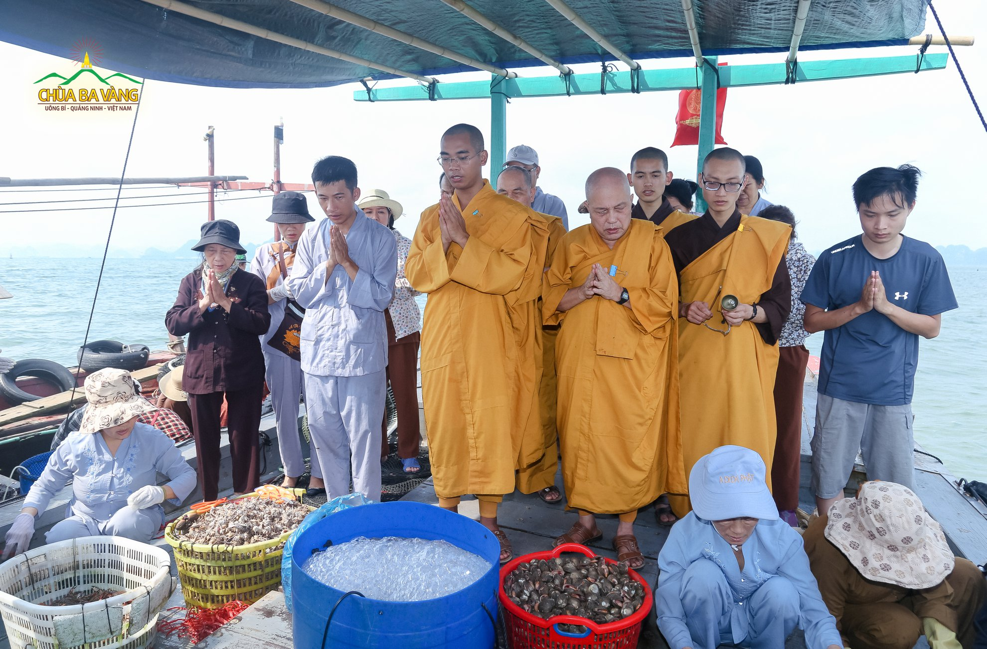 Trước khi phóng sinh các con vật, chư Tăng chùa Ba Vàng đã tác lễ sám hối và quy y Tam Bảo cho chúng, giúp các con vật được kết duyên lành với Tam Bảo.