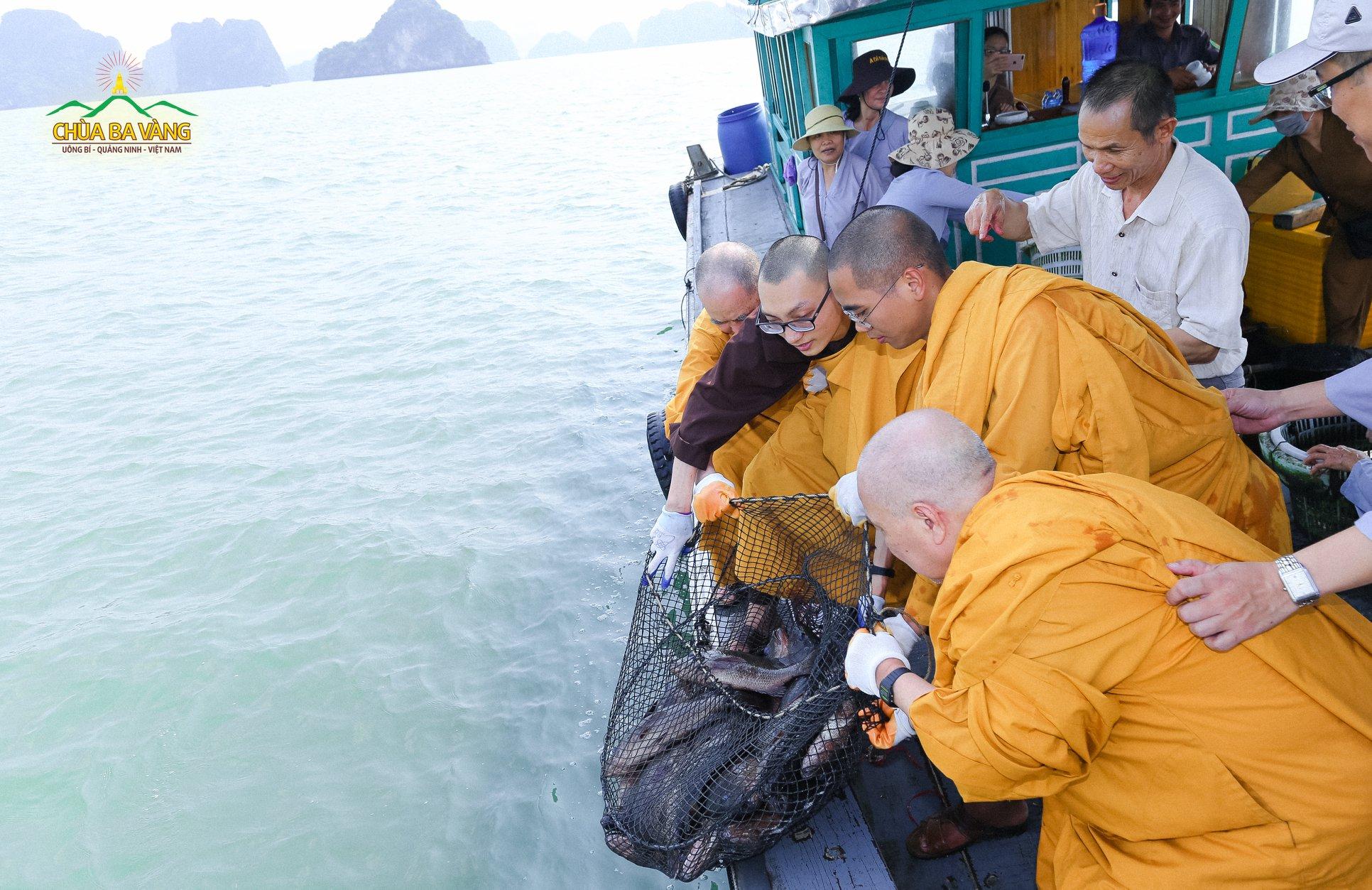Chư Tăng chùa Ba Vàng phóng sinh thả những con vật về với biển cả.