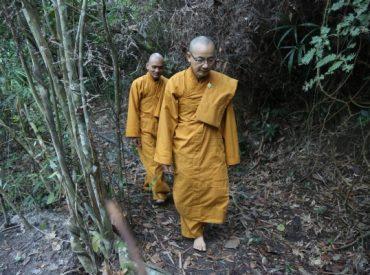 Chúng Tỳ Kheo chùa Ba Vàng tu tập trong rừng.