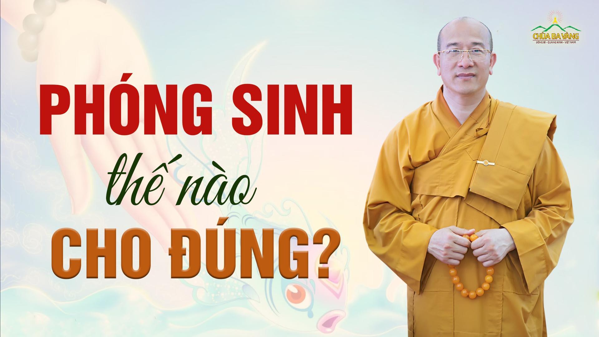Phóng sinh thế nào cho đúng? - Vấn đáp Phật Pháp