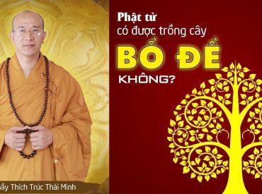 Phật tử tại gia có được trồng cây Bồ Đề.