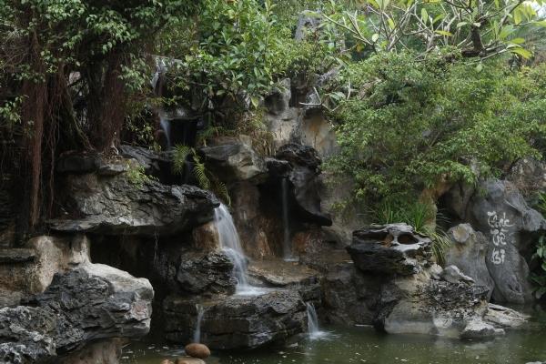 Dọc theo con đường từ cổng Tam quan lên chùa Ba Vàng.