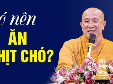 Có nên ăn thịt chó hay không? Thầy Thích Trúc Thái Minh Chùa Ba Vàng