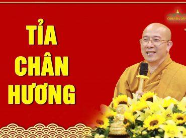 Tỉa chân hương đúng cách Thầy Thích Trúc Thái Minh - chùa Ba Vàng