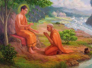 Ngài A-nan bạch Phật về tâm hiếu của người xuất gia