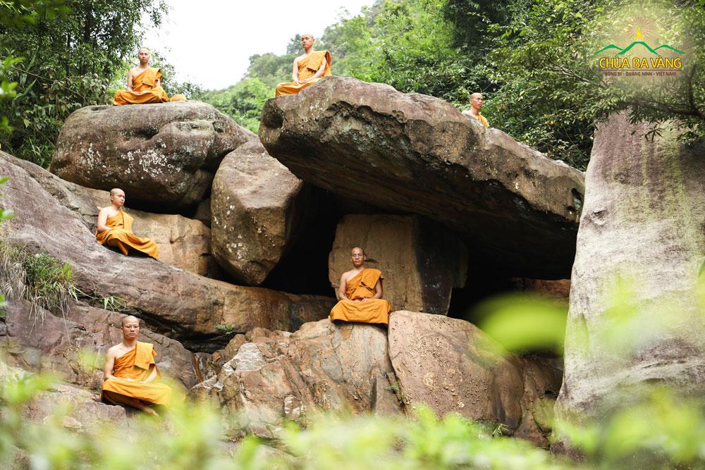 Chư Tăng chùa Ba Vàng tu tập thiền định trong rừng