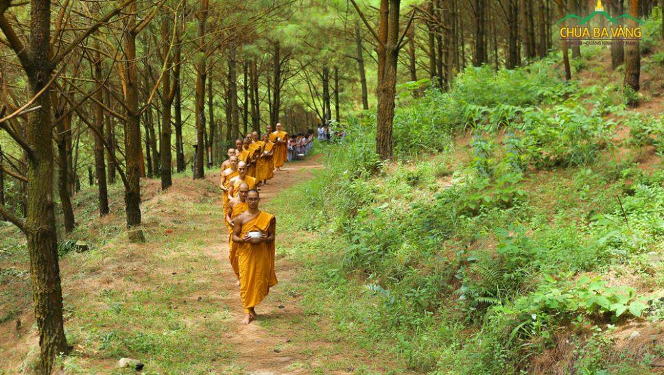 Chư Tăng chùa Ba Vàng khất thực trong rừng thiền bên Tăng