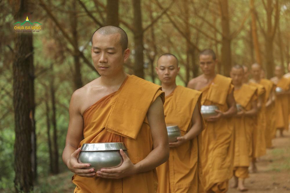 Tăng đoàn ôm bình bát - trì bình khất thực trong rừng