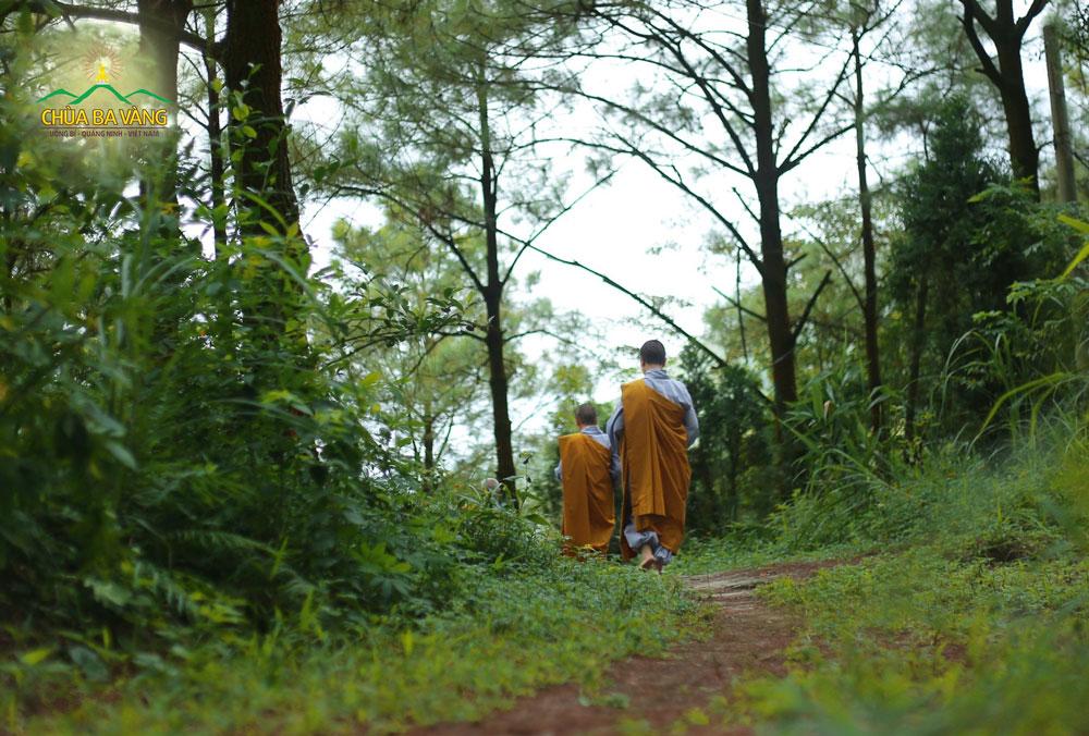 Chư Ni Chùa Ba Vàng thực hành theo pháp tu khổ hạnh - Sống ở trong rừng