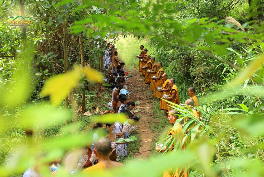 Phật tử chắp tay thành kính trong buổi sớt bát cúng dường chư Tăng tu tập trong rừng
