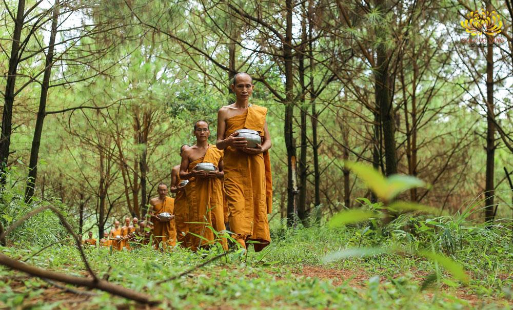 Chư Tăng chùa Ba Vàng vào rừng tu tập thực hành pháp của Phật