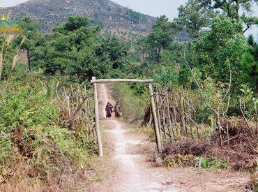 Con đường đi lên chùa Ba Vàng khi Sư Phụ Thích Trúc Thái Minh về chùa năm 2007