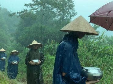 Chư Tăng chùa Ba Vàng chân trần đội mưa khất thực trong rừng