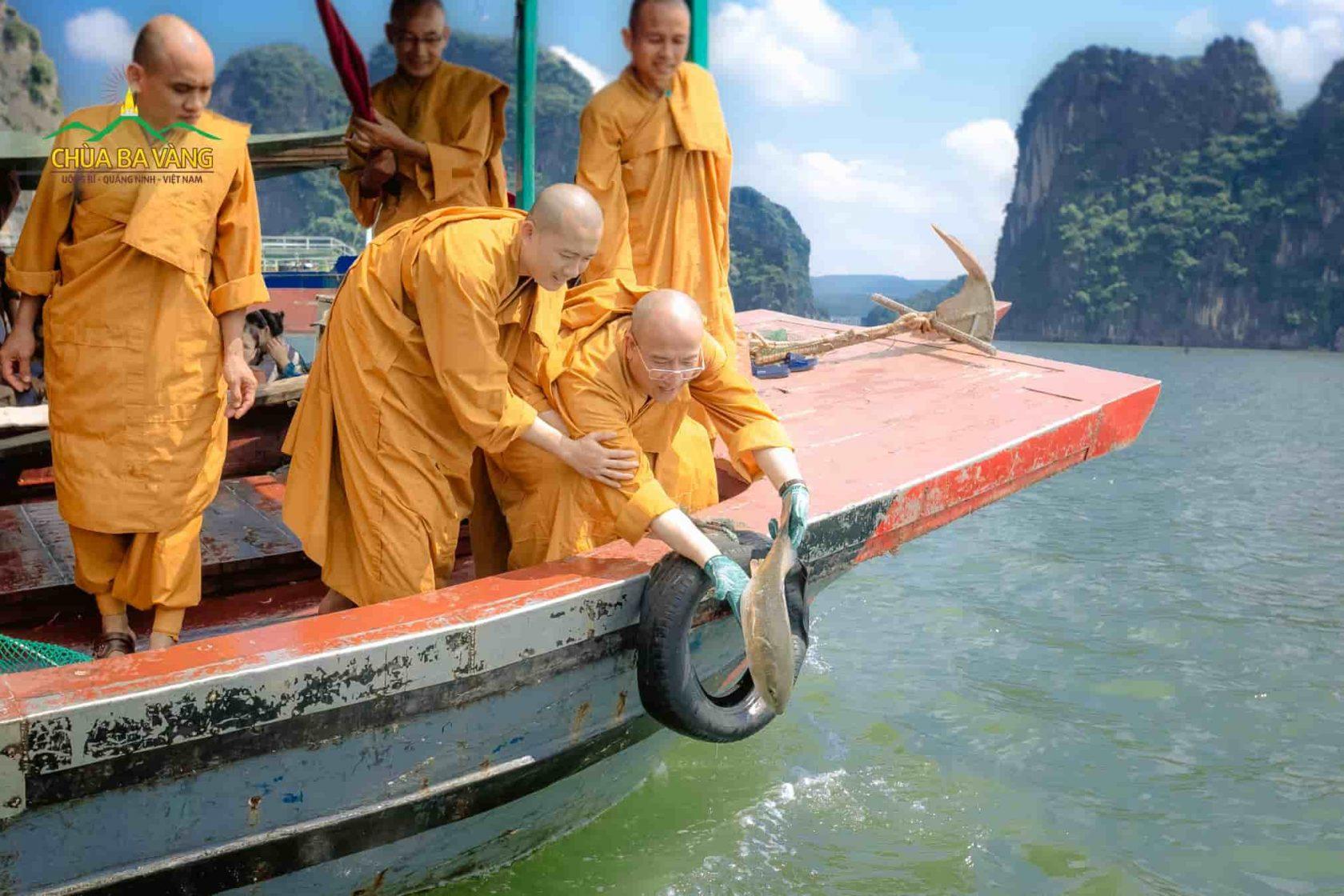 Chư Tăng chùa Ba Vàng phóng sinh cứu các con vật khỏi bị giết hại