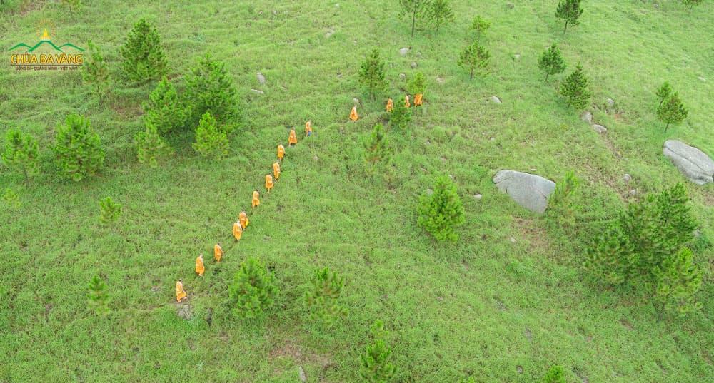Chư Tăng chùa Ba Vàng thực tập tu tập sống trong rừng