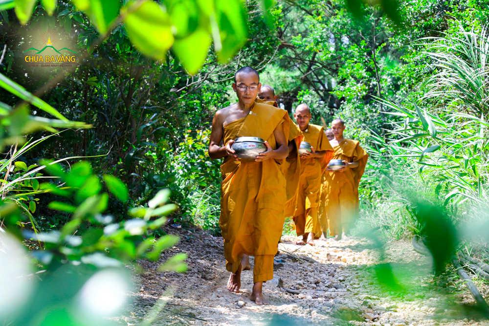 Chư Tăng chùa Ba Vàng thực tập ngày ăn 1 bữa tối ngủ trong rừng