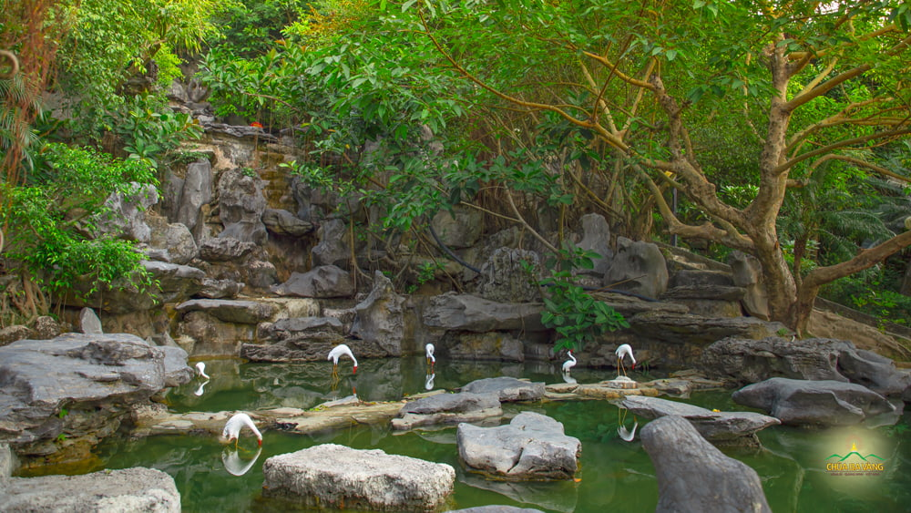 Đến với chùa Ba Vàng quý khách có thể thưởng thức phong cảnh tuyệt đẹp nơi đây