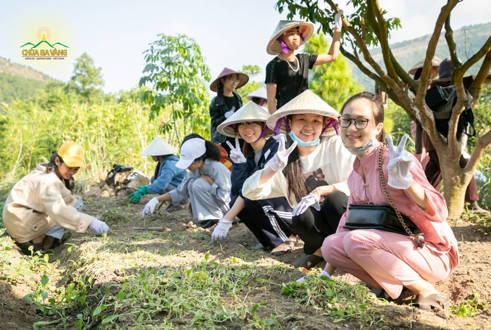 Tại vườn rau sạch chùa Ba Vàng cũng rất tấp nập và đông vui