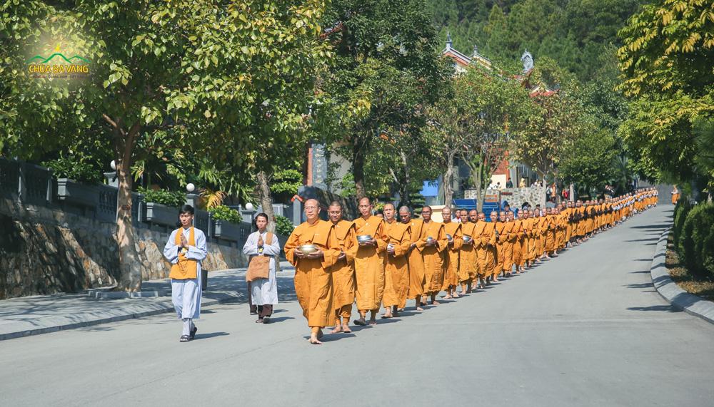 Những bước chân an lạc của Tăng đoàn trì bình khất thực tại khuôn viên chùa Ba Vàng