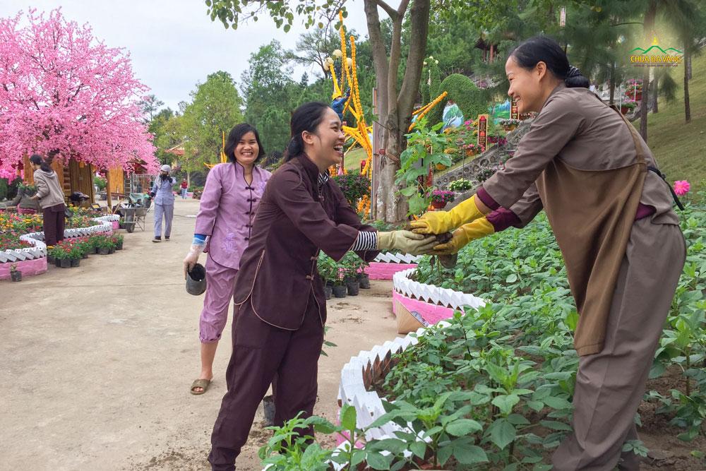 Nụ cười rạng rỡ trên khuôn mặt của các Phật tử CLB Trúc Hải - Hải Phòng khi được làm công quả tại chùa