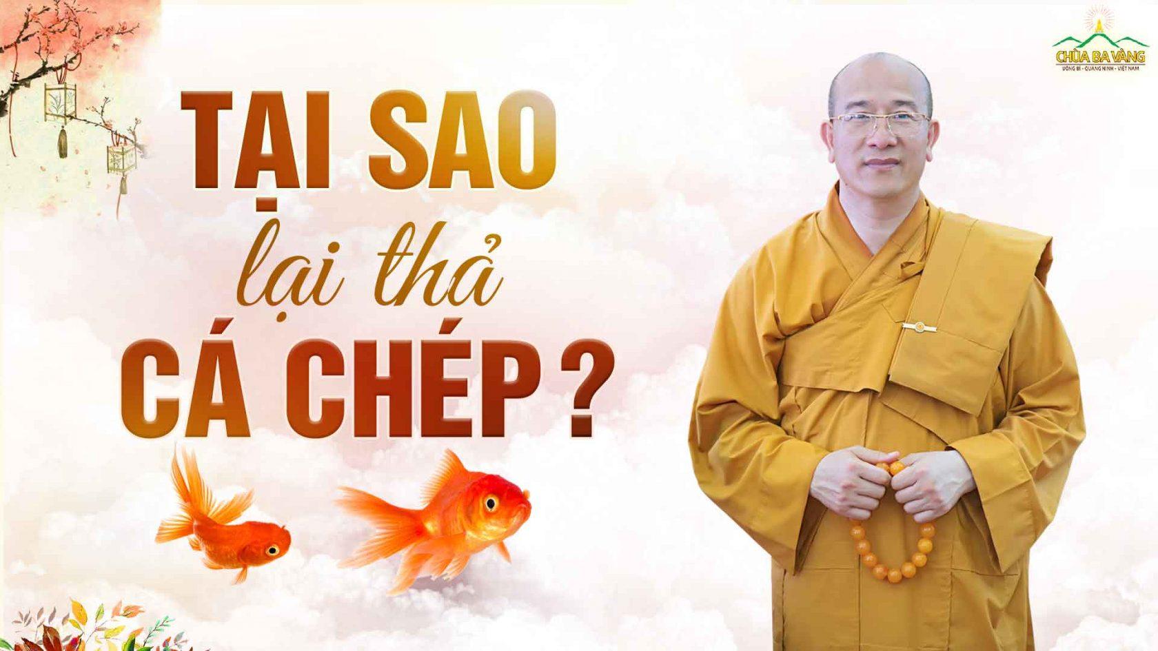 Vì sao lại thả cá chép trong ngày cúng ông Công ông Táo?