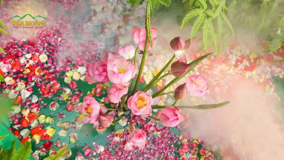 Vẻ đẹp thuần khiết của loài hoa