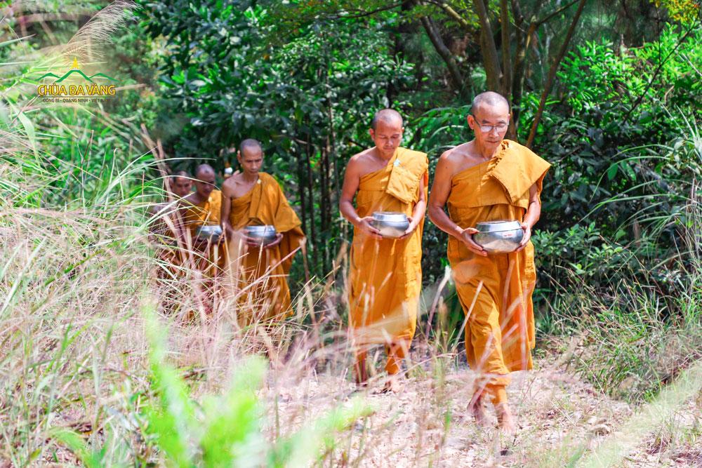 Chư Tăng chùa Ba Vàng thực hành giữ giới của Đức Phật, ăn ngày một bữa, tối ngủ trong rừng