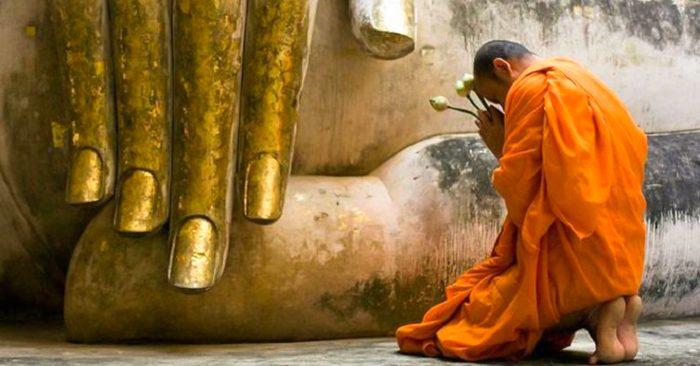 Lòng tin vào Tam Bảo là một yếu tố quan trọng trên bước đường tu học Phật Pháp