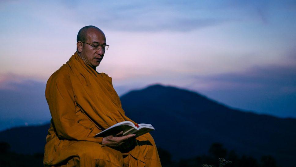 Sư Phụ Thích Trúc Thái Minh dành nhiều thời gian nhập rừng tu tập để có thêm năng lượng hồi hướng cầu nguyện nạn dịch sớm được tiêu trừ