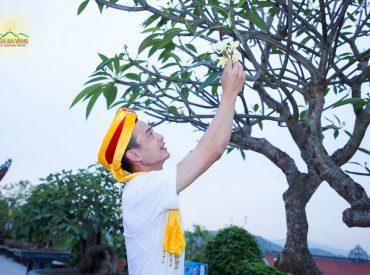 Phật tử chùa Ba Vàng vui mừng khi được hái hoa cúng dường Phật trong ngày lễ Phật đản