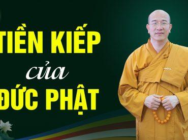 Trước khi đản sinh, Đức Phật Thích Ca là ai?