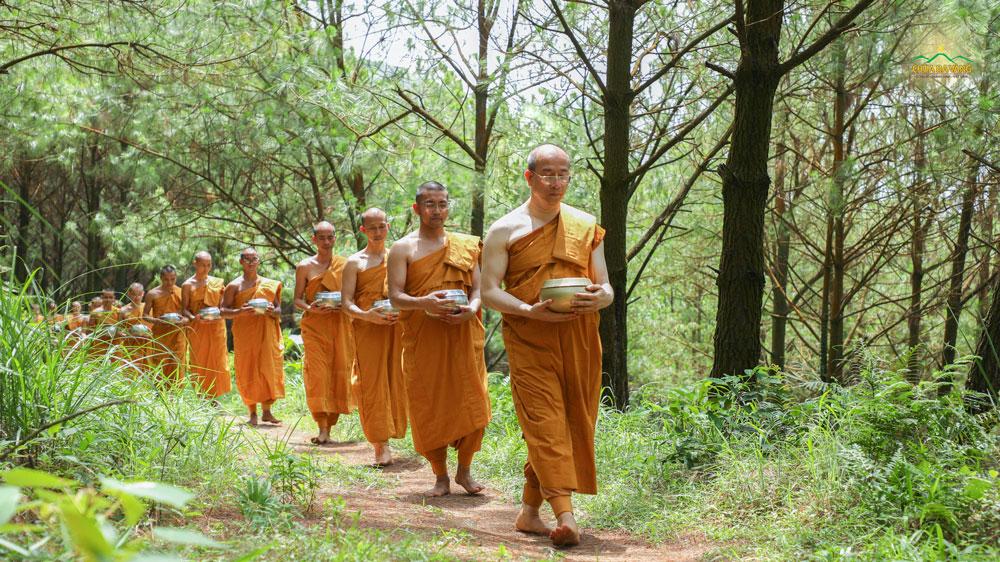Trong màu áo huỳnh y giải thoát, Sư Phụ dẫn đầu Tăng chúng bước những bước chân tự tại theo con đường