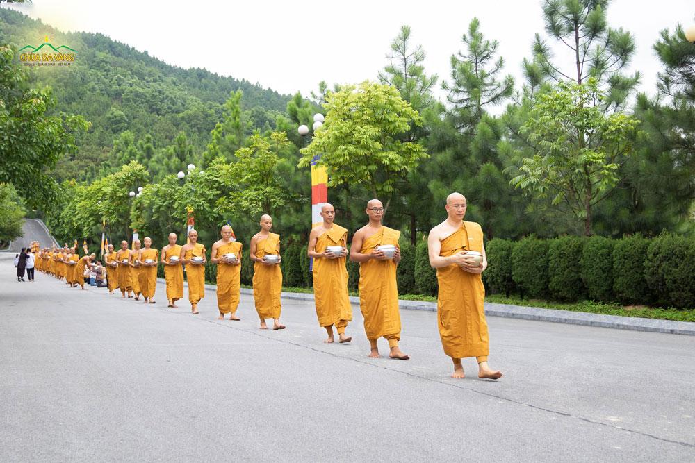 Sư Phụ Thích Trúc Thái Minh dẫn đầu Tăng đoàn trong màu huỳnh y giải thoát bước những bước chân tự tại, an lạc trong buổi khất thực