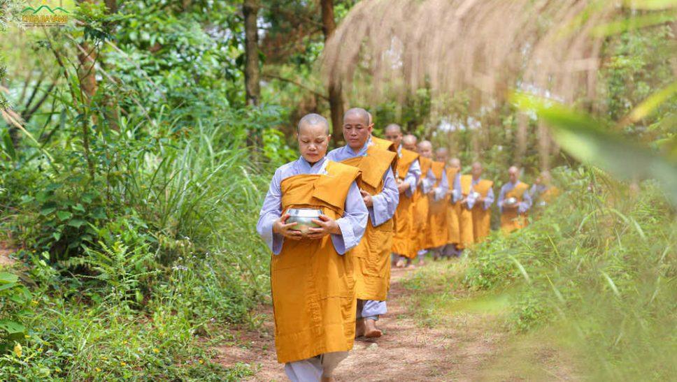 Chư Ni chùa ba Vàng từ trong rừng thiền ra bìa rừng để thọ nhận sự đặt bát cúng dường của các Phật tử