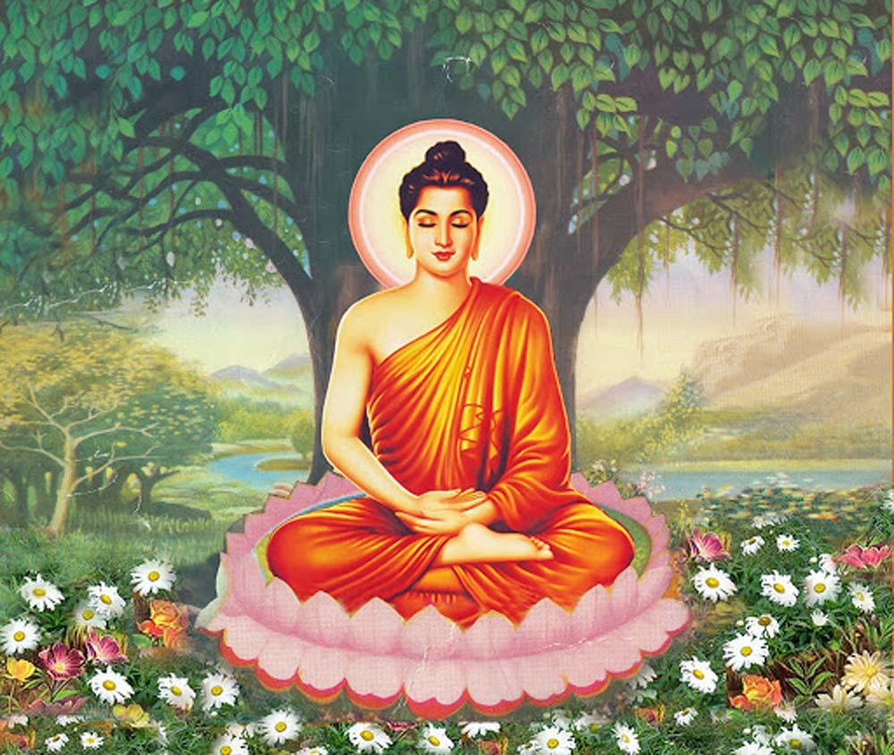 Đức Phật Thích Ca - Người đã tìm ra con đường giúp chúng sinh thoát khổ