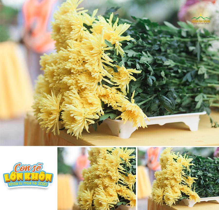Những bông hoa ngát hương được các bạn khóa sinh dâng lên để tỏ lòng tri các Anh hùng liệt sĩ