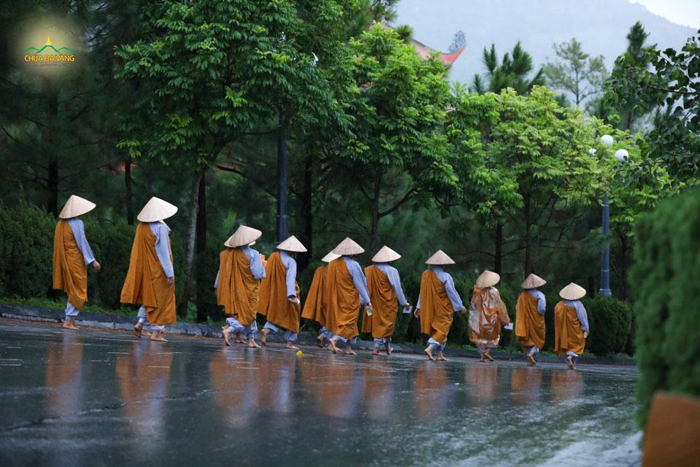 Chư Ni chùa Ba Vàng kinh hành tụng kinh tán dương công đức Tam Bảo