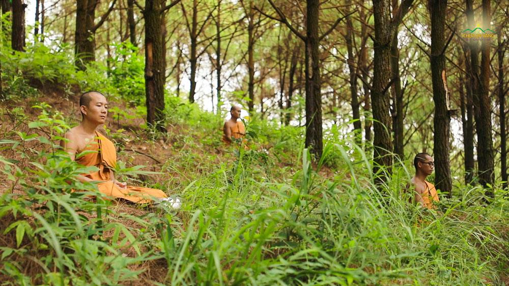 Tu tập trong rừng vắng lặng là điều kiện thuận lợi để chư Tăng quán xét nội tâm, dùng Pháp của Phật để đoạn trừ những cấu nhiễm trong tâm mình