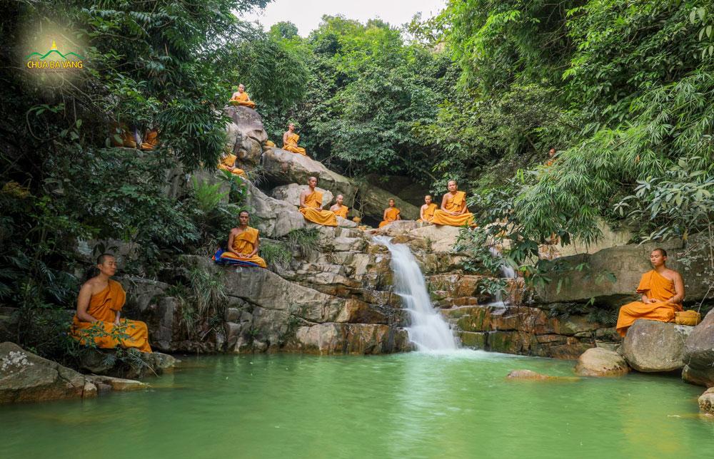 Chư Tăng chùa Ba Vàng tu tập trong rừng thiền làm lợi ích cho chúng sinh