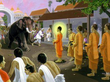 Con voi điên hung dữ tấn công Đức Phật và Tăng đoàn (ảnh minh họa)