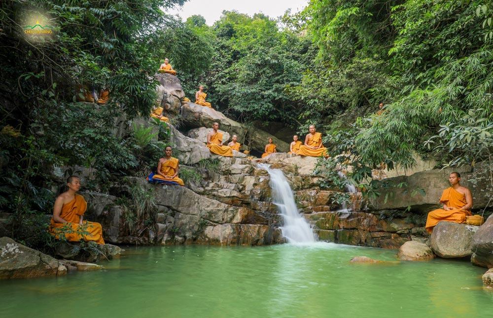 Chư Tăng chùa Ba Vàng tu tập thiền định tại rừng thiền (môi trường để tu tập thiền định rốt ráo nhất)