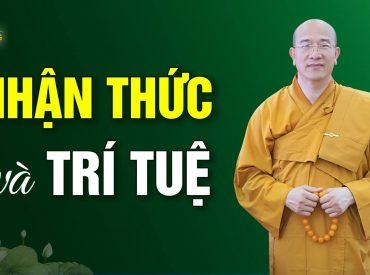 Trí tuệ và nhận thức khác nhau ở đâu?   Thầy Thích Trúc Thái Minh