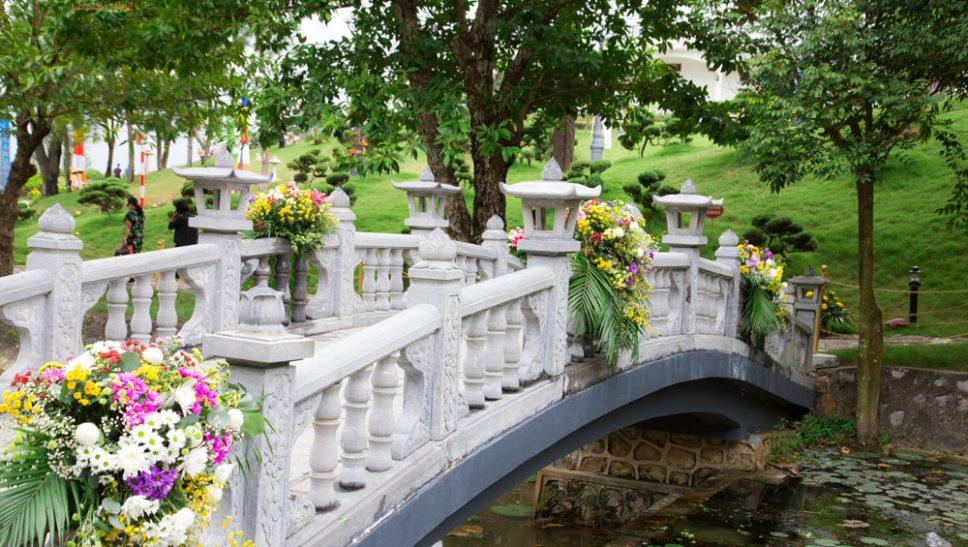 Chùm ảnh: Con đường hoa cúc trải dài trên non thiêng Thành Đẳng