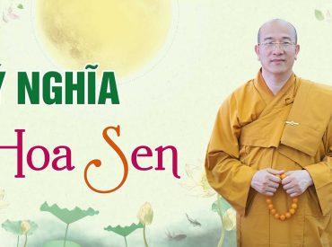 Hoa Sen Có Ý Nghĩa Gì Mà Đức Phật Đản Sinh Bước Đi Trên Hoa Sen
